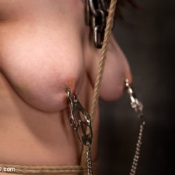 Iona Grace in 'Kink' Final Exam-blue and red (Thumbnail 14)