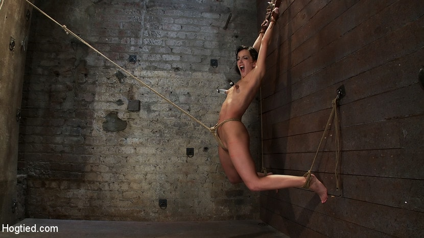 Kink 'Brutalize her with a massive dose of tickling. Boy does she hate every second! C5 suspension' starring Isis Love (photo 4)