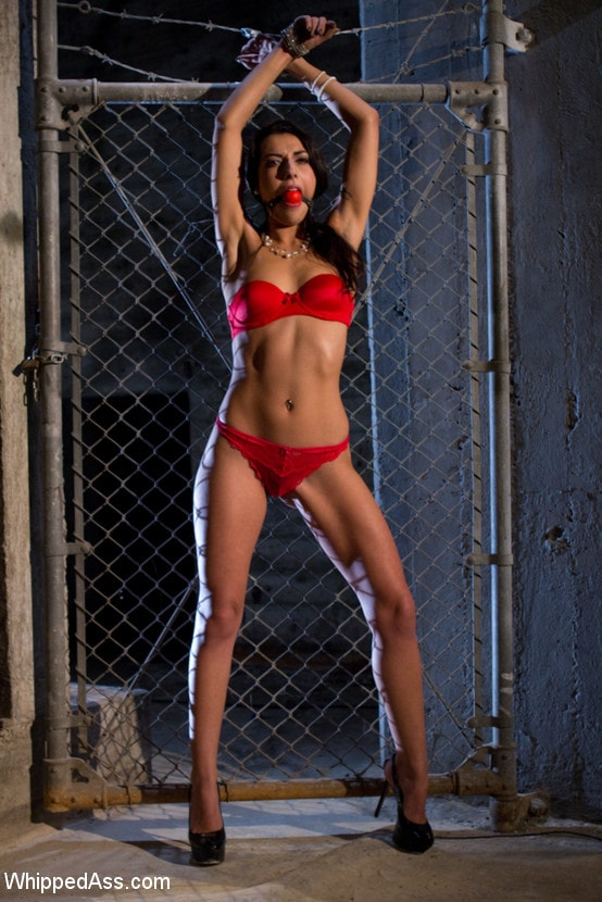 Kink 'Interrogating the French Beauty' starring Isis Love (Photo 1)