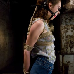 Isobel Wren in 'Kink' Isobel Wren (Thumbnail 2)