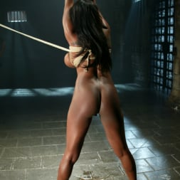 Jada Fire in 'Kink' Sick, Sick Jada Fire (Thumbnail 12)