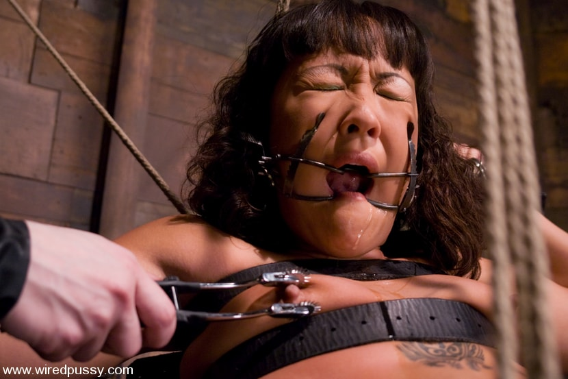 Kink 'Don't worry, it's just a little electricity!' starring Jandi Lin (Photo 3)