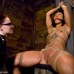 Jandi Lin in 'Kink' Don't worry, it's just a little electricity! (Thumbnail 5)