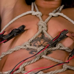 Jandi Lin in 'Kink' Don't worry, it's just a little electricity! (Thumbnail 9)