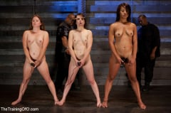 Juliette March - Five Girl Intake The Elimination Begins (Thumb 03)