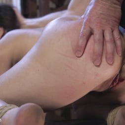 Juliette March in 'Kink' Petulance Training: Juliette March (Thumbnail 14)