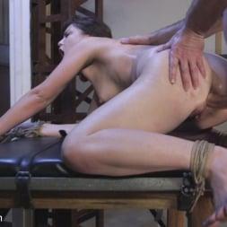 Juliette March in 'Kink' Petulance Training: Juliette March (Thumbnail 18)