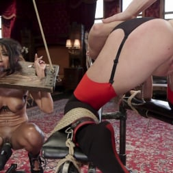 Kacie Castle in 'Kink' The Sex Toy and The Whipping Girl (Thumbnail 3)