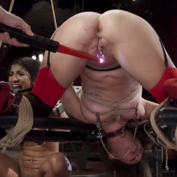 Kacie Castle in 'Kink' The Sex Toy and The Whipping Girl (Thumbnail 10)