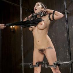Karlee Grey in 'Kink' Big Tit Squirter Screams in Metal Bondage (Thumbnail 2)
