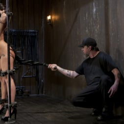 Karlee Grey in 'Kink' Big Tit Squirter Screams in Metal Bondage (Thumbnail 11)