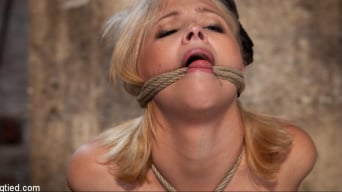 Katie Kox in 'and her Monster tits are introduced to Hogtied the meet and greet.'