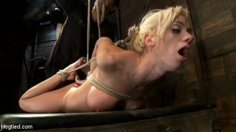 Kaylee Hilton in 'Hot blond with big tits, pony tails, and braces. Face fucked, hogtied and made to cum like a whore.'