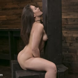 Kimber Woods in 'Kink' Insatiable Sex Vixen Gets Power Fucked (Thumbnail 9)
