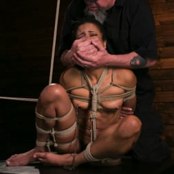 Kira Noir in 'Kink' Brutal Predicament Bondage Devastates Kira Noir (Thumbnail 12)