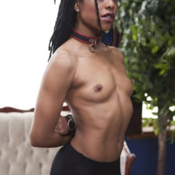 Kira Noir in 'Kink' Duties of a Submissive Anal Wife (Thumbnail 22)