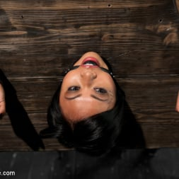 Krissie Dee in 'Kink' Punished by Sebastian Keys on DeviceBondage! (Thumbnail 12)