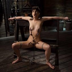 Kristen Scott in 'Kink' Kristen Scott: Two Days Of Torment, Day Two (Thumbnail 2)