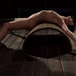 Kristen Scott in 'Kink' Kristen Scott: Two Days Of Torment, Day Two (Thumbnail 7)