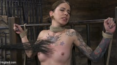 Krysta Kaos - Alt Dream Girl Krysta Kaos Abused and Fucked in Extreme Rope Bondage!! (Thumb 11)
