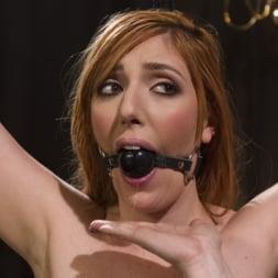 Lauren Phillips in 'Kink' Bella Rossi Breaks in Redhead Lesbian Anal Slave (Thumbnail 7)