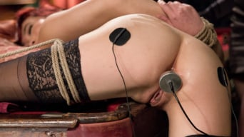 Lea Lexis に 'deals a full house of electric orgasms to slutty Lea Hart'