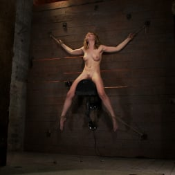 Lily LaBeau in 'Kink' With a look of total helplessness is in her eyes, she begs with out saying a word, that is magic. (Thumbnail 3)