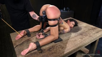 Lily Lane in 'Tattooed Pain Slut Begs to Suffer in Diabolical Devices'