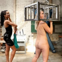 Lisey Sweet in 'Kink' Anal Dungeon: Lisey Sweet's Big Ass Gets Worked by Mistress Kira Noir (Thumbnail 5)