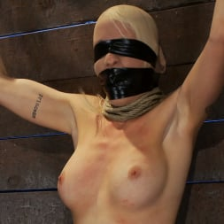 Lorelei Lee in 'Kink' Legs tied to neck, a slow choke out As her arms weaken the pull on the neck gets stronger. (Thumbnail 13)