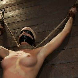 Lorelei Lee in 'Kink' Legs tied to neck, a slow choke out As her arms weaken the pull on the neck gets stronger. (Thumbnail 14)