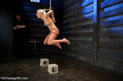 Lorelei Lee - Lorelei Lee Day 4 Facing Fears, Taking Brutal Torture, and Extreme Orgasms (Thumb 02)
