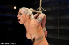 Lorelei Lee - Lorelei Lee Day 4 Facing Fears, Taking Brutal Torture, and Extreme Orgasms (Thumb 08)