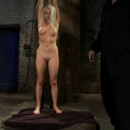 Lorelei Lee in 'Kink' We yank a leg up, cane her then make her cum until she's totally physically and emotionally wrecked (Thumbnail 1)
