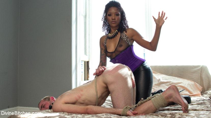 Ebony femdom, porn galery