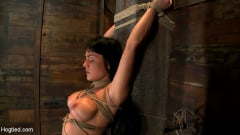 Mahina Zaltana - Hot sexy Hawaiian is bound to a pole, lifted to her tip toes with a brutal crotch rope. Made to cum! (Thumb 01)