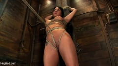 Mahina Zaltana - Hot sexy Hawaiian is bound to a pole, lifted to her tip toes with a brutal crotch rope. Made to cum! (Thumb 10)