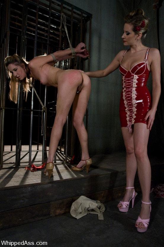 Kink 'Calico Surrenders' starring Maitresse Madeline (Photo 1)