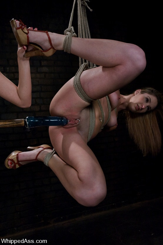 Kink 'Calico Surrenders' starring Maitresse Madeline (Photo 17)