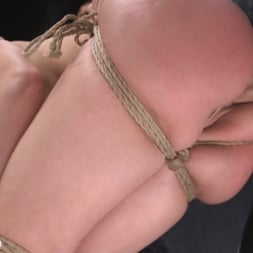 Mandy Muse in 'Kink' Polite Obedient Slut Takes It (Thumbnail 7)