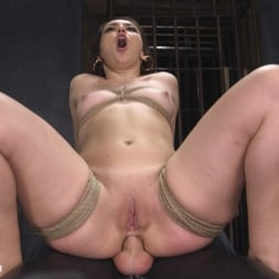 Mandy Muse in 'Kink' Polite Obedient Slut Takes It (Thumbnail 23)