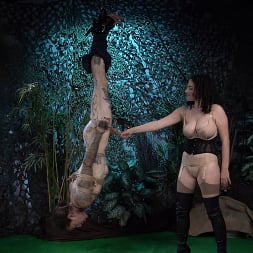 Mistress Blunt in 'Kink' Snared, Part 1: Mistress Blunt Traps Her Toy! (Thumbnail 8)