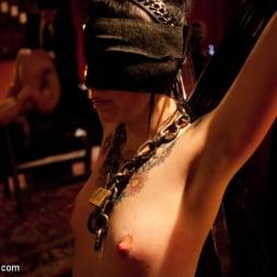 Phoenix Marie in 'Kink' Tits in Trouble (Thumbnail 5)