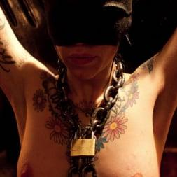 Phoenix Marie in 'Kink' Tits in Trouble (Thumbnail 9)