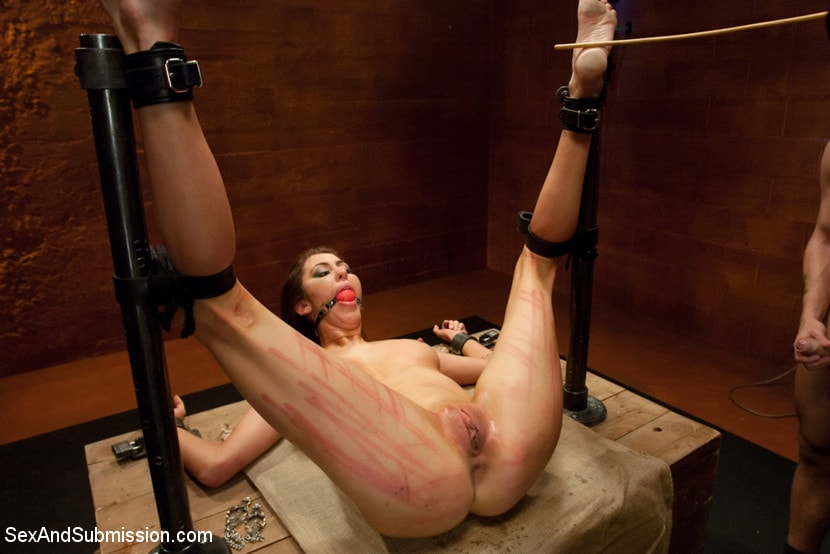 Kink 'Princess Donna Destroyed!!!' starring Princess Donna Dolore (Photo 9)