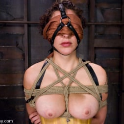 Princess Donna Dolore in 'Kink' Princess Donna subs again!!! (Thumbnail 2)