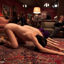 Proxy Paige in 'Kink' Anal Acrobat Proxy Page shows House Slave How To Take it in the Ass (Thumbnail 17)