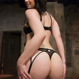 Proxy Paige in 'Kink' Anal Submission and POV (Thumbnail 1)