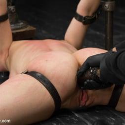 Proxy Paige in 'Kink' vs Orlando (Thumbnail 14)