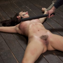 Roxanne Rae in 'Kink' 65 Minutes of Hell!! (Thumbnail 6)